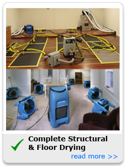Complete Structural & Floor Drying | Water Damage Restoration - Home and Commercial