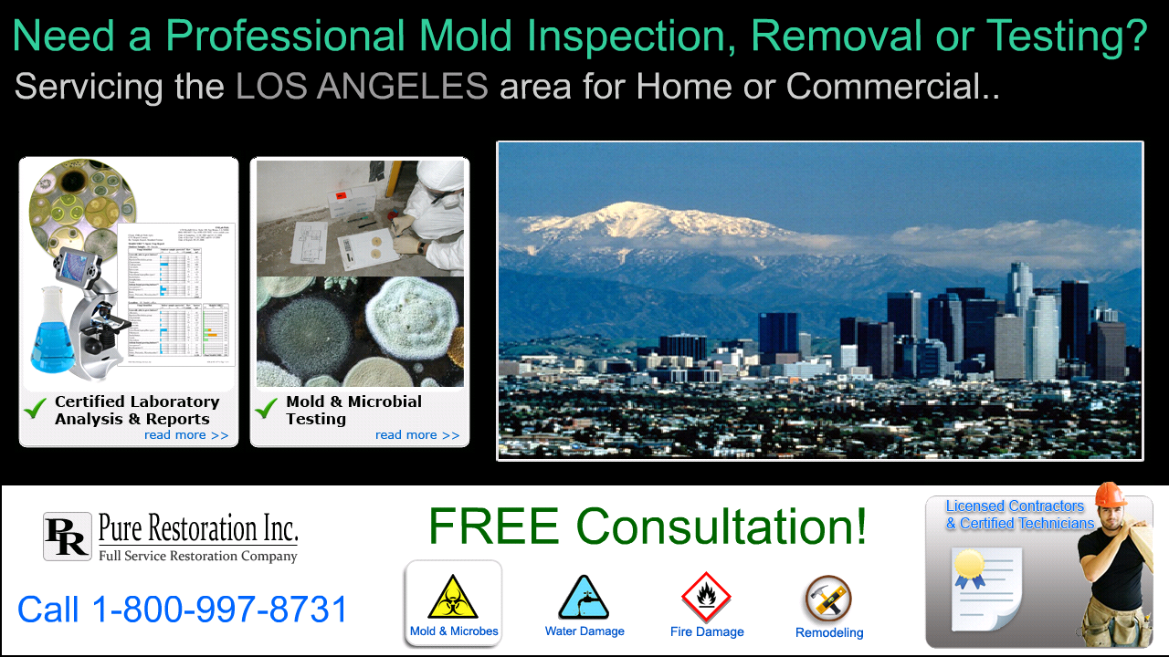 Property Inspection Companies Los Angeles